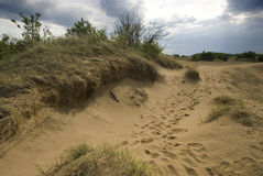Dunes de sable de Saskatchewan Images stock