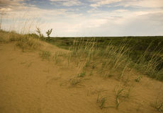 Dunes de sable de Saskatchewan Photographie stock libre de droits