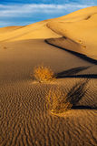 Dunes de sable de vallée d'Eureka Death Valley Image stock