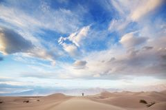 Dunes de sable en Californie Photo stock