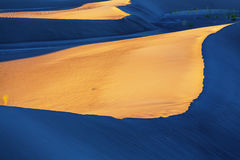 Dunes de sable en Californie Photos libres de droits