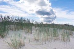 Dunes de sable et ciel bleu Photographie stock