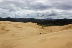 Dunes de sable g?antes chez Te-Paki sur la plage de 90 milles en terre du nord Nouvelle-Z?lande image stock