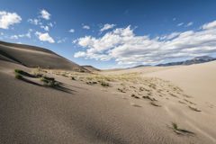Dunes de sable grandes stationnement national, le Colorado, Etats-Unis photo stock