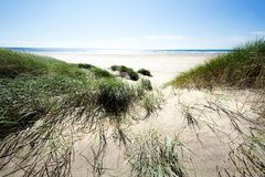 Dunes de sable le long du rivage Photo stock