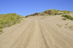 Dunes de sable nationales de bord de la mer de Cape Cod photo stock