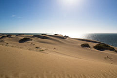 Dunes de sable Ningaloo Photos libres de droits