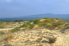 Dunes de sable, Primorsko Image libre de droits