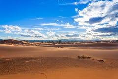 Dunes de sable roses de corail Photographie stock