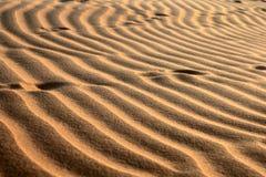 Dunes de sable rouges. Configuration image libre de droits