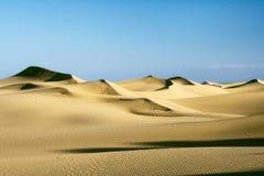 Dunes de sable sur le coucher du soleil Photo stock