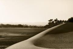 Dunes de sable sur le coucher du soleil Image stock