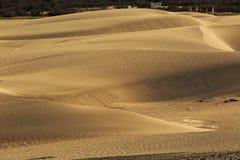 Dunes de sable sur le fond, Leh Ladakh, Himalaya, Jammu et Images libres de droits