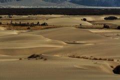 Dunes de sable sur le fond, Leh Ladakh, Himalaya, Jammu et Image stock