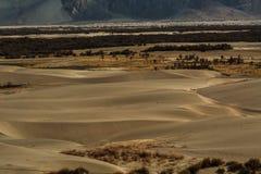 Dunes de sable sur le fond, Leh Ladakh, Himalaya, Jammu et Images stock