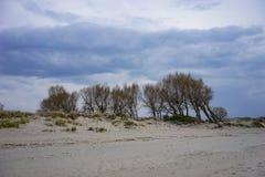 Dunes de sable sur le rivage de la mer baltique Photo libre de droits
