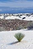 Dunes de sables blanches n Nouveau Mexique Images libres de droits