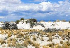 Dunes des sables blancs Images stock