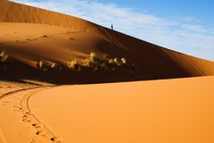 Dunes of desert Royalty Free Stock Photography