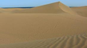 Dunes of the desert Royalty Free Stock Photo