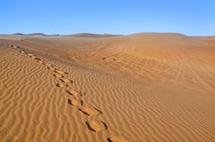 Dunes in the desert.Arid desolate landscape.Footprints in the sa Stock Photography