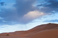 Dunes of the desert. The beautiful scenery of the desert with one big dune Stock Photography