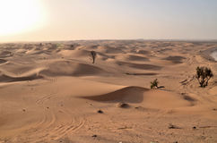 The dunes in the desert, Dubai Royalty Free Stock Photos