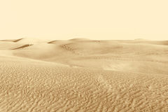 Dunes in the desert Stock Image