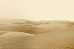 Dunes in the desert Royalty Free Stock Photos