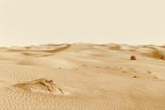 Dunes in the desert Stock Photography