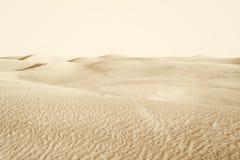 Dunes in the desert Stock Images
