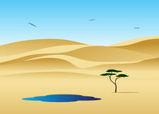 Dunes. Royalty Free Stock Photography