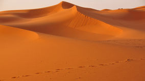 Dunes in the desert of Morocco Stock Images