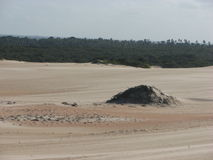 Dunes and desert in Natal, RN, Brazil royalty free stock photography