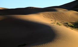 Dunes Stock Photo