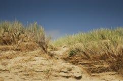 Dunes du sable et de l'herbe, milieux de nature avec l'horizon, R-U Image libre de droits
