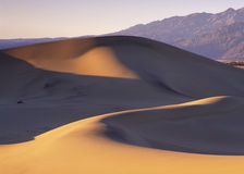 Dunes before dust storm Royalty Free Stock Image