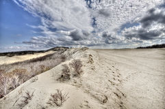Dunes on the Dutch coast Stock Photos