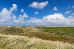 Dunes at the Dutch coast. Dutch landscape with dunes near the coast of the North sea Stock Images