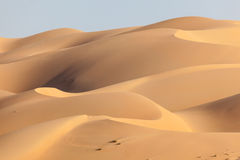 Dunes in the Empty Quarter desert Royalty Free Stock Photography