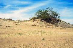 Dunes en Lithuanie photographie stock libre de droits