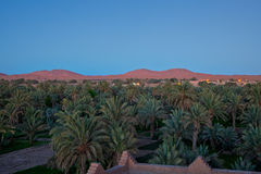 The dunes of Erg Chebbi at dusk (3). Royalty Free Stock Photo