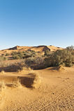 Dunes of Erg Chebbi at Morocco Royalty Free Stock Photos