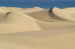 Dunes et mer photo stock