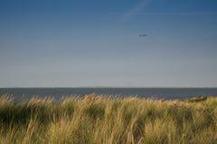 Dunes et mer du mauvais de Cadzand, Pays-Bas photographie stock libre de droits