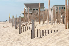 Dunes fencing along outer banks of north carolina in cape hatter Stock Image