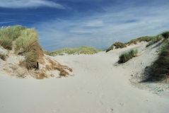 Dunes in France. Dunes in the North of France Stock Photography