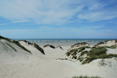 Dunes in France. Dunes in the North of France Stock Photos