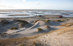 Dunes fronting the beach. Island of Fanoe in Denmark Stock Photography