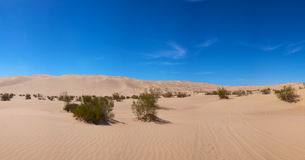 Dunes in Glamis California Stock Image